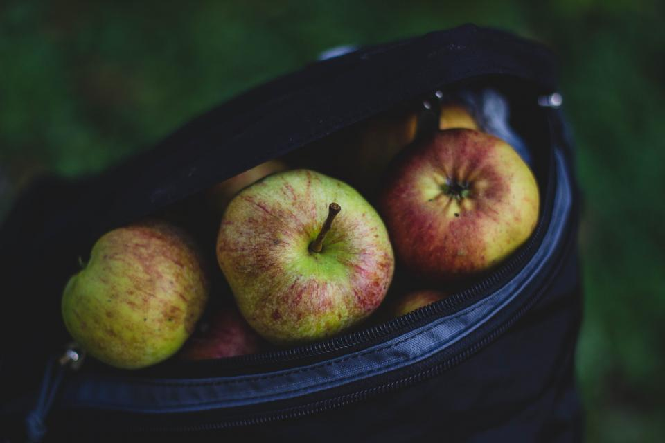apples fruits food healthy bag lunch lunchbox