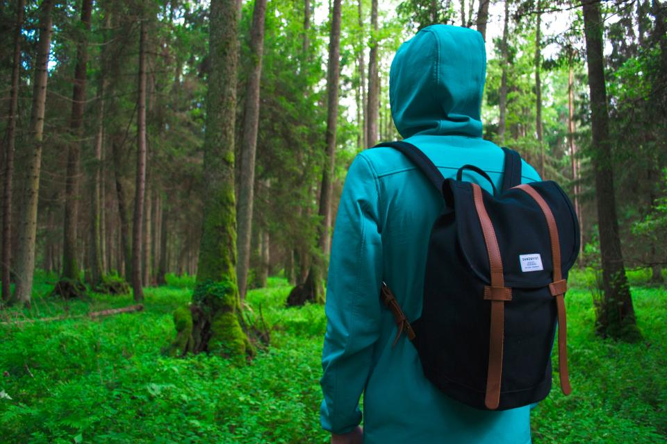 people man alone hiking outdoor adventure bag backpack hoodie jacket green grass tree plant nature forest