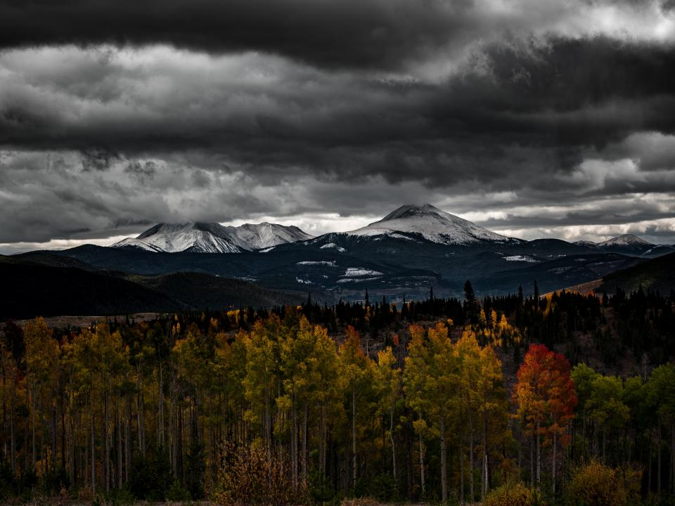 autumn fall trees plant mountain view highland landscape nature winter snow cloudy