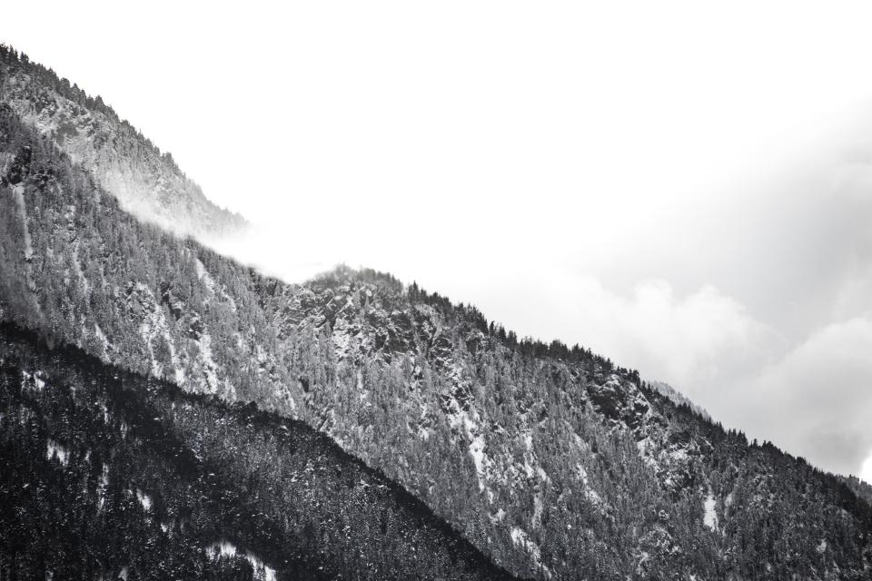 winter snow trees forest hills mountains black and white landscape nature