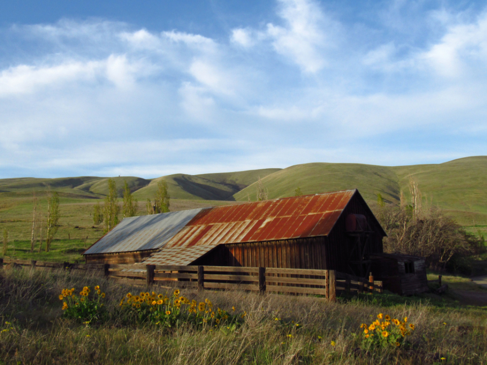 old farm barn rustic landscape bluesky countryside weathered wood fence country farming field building rural