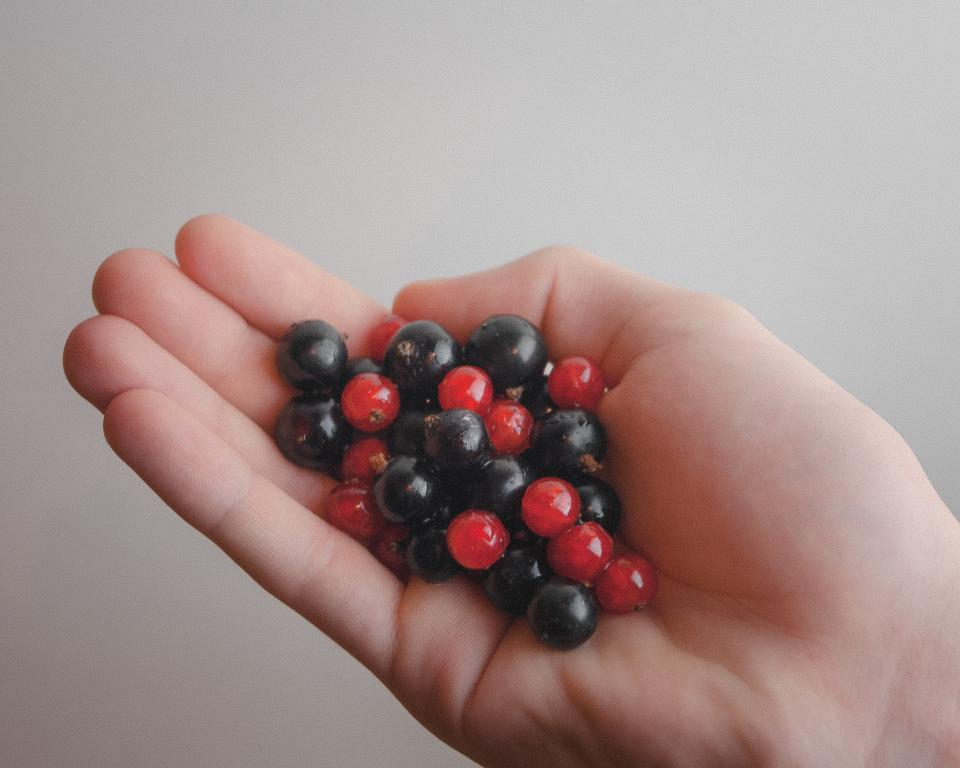 red blue berries hands food