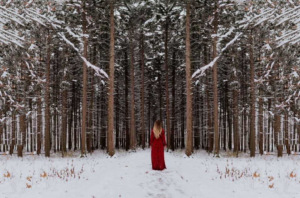 tree plant forest snow winter people girl alone red dress cold weather