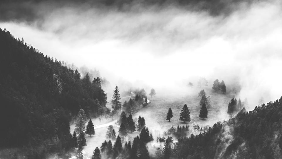 nature black and white monochrome fog clouds sky trees pine tree mountain landscape