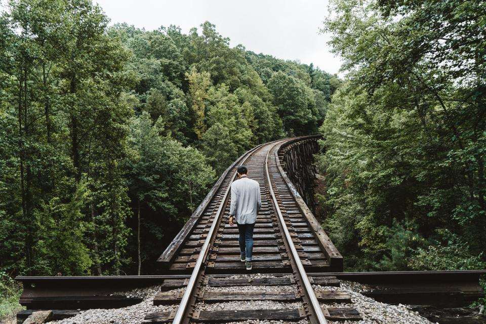 people man alone walking travel trees green plant nature railway track wood forest