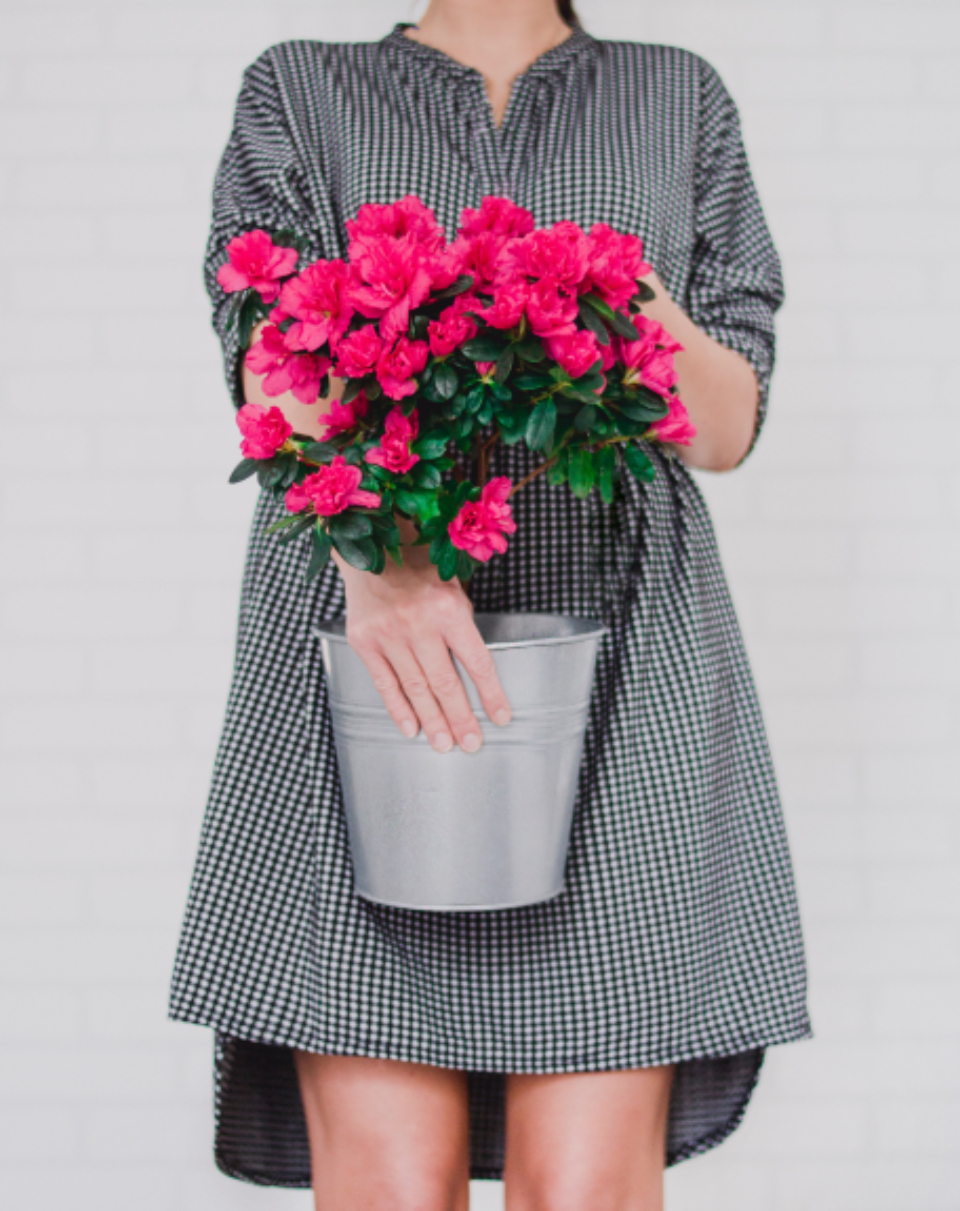 woman pink flowers fashion dress female girl plant metal