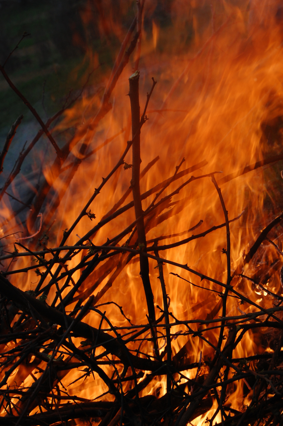 hot fire outside elements flames burn brush wood
