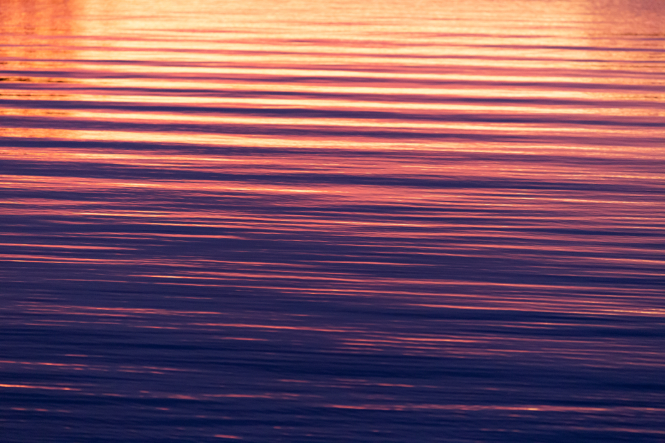 rippled water lake waves sunlight reflections current drift nature natural ocean river sea wet movement surface texture sunset
