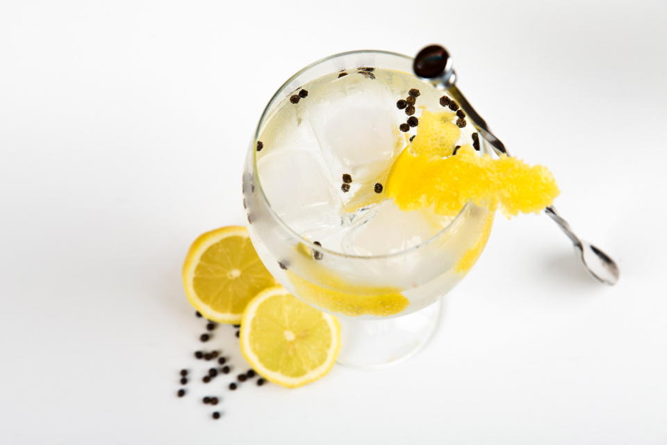 gin cocktail lemon glass cold ice food drink orange citrus cocktail glass liquor vodka minimal white background
