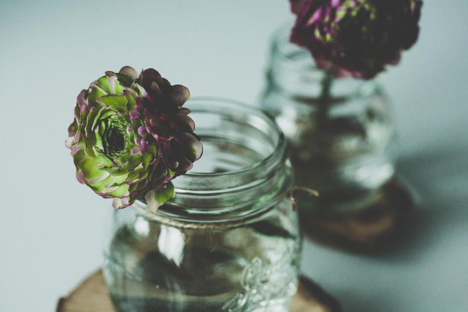vase mason jar flowers decor