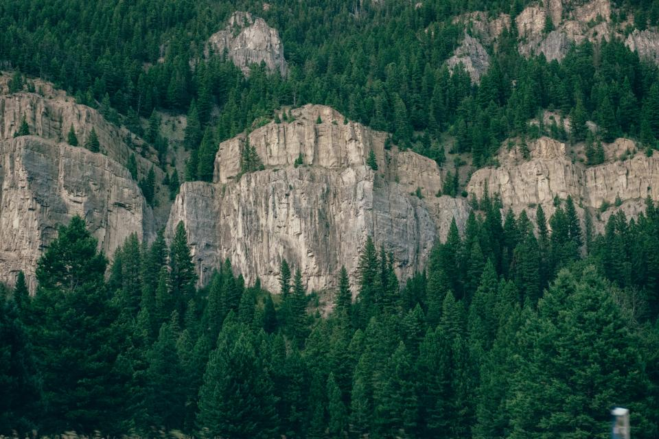 nature landscape mountains cliff rocks forests trees pine brown green