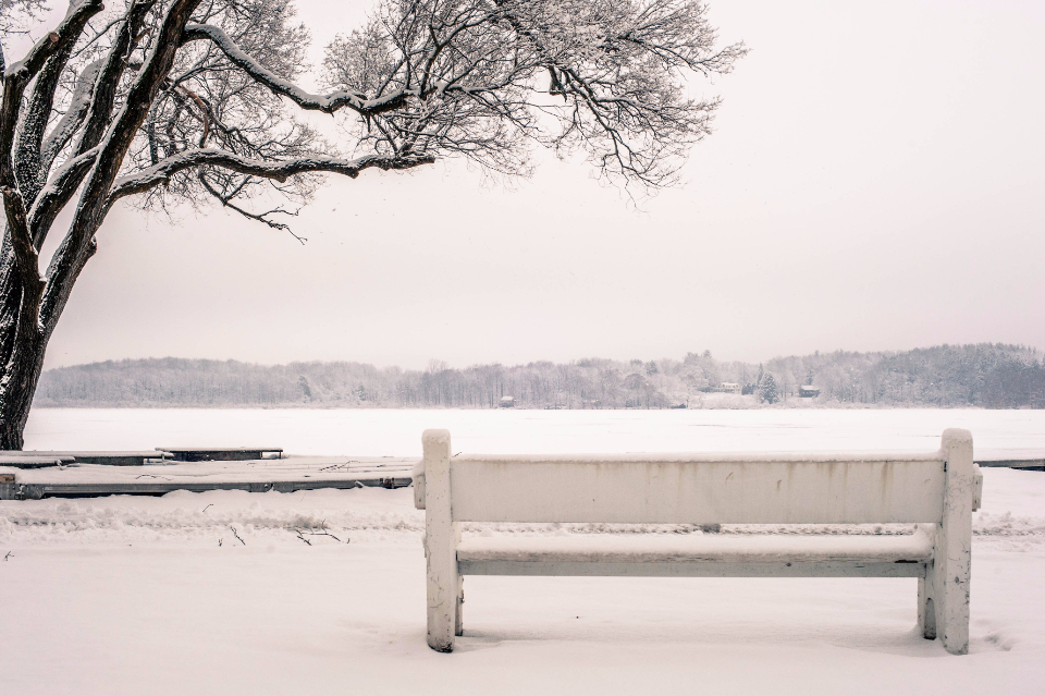 snow bench park river lake water frozen ice tree cold fog frost winter