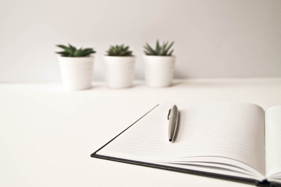 minimal cactus desk white nature plant pen write office notepad notebook