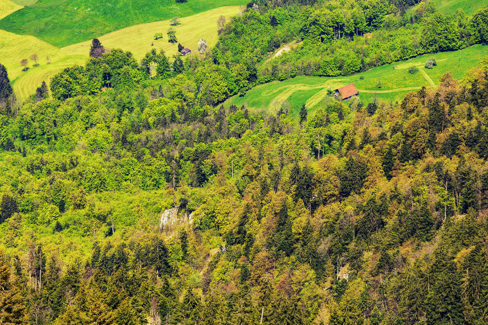 view aerial mountain Stanserhorn Swiss Alps Alps spring springtime house tree grass green forest colorful fresh field meadow alpine hill nature landscape travel countryside rural Nidwalden Switzerland Swiss Europe Eu
