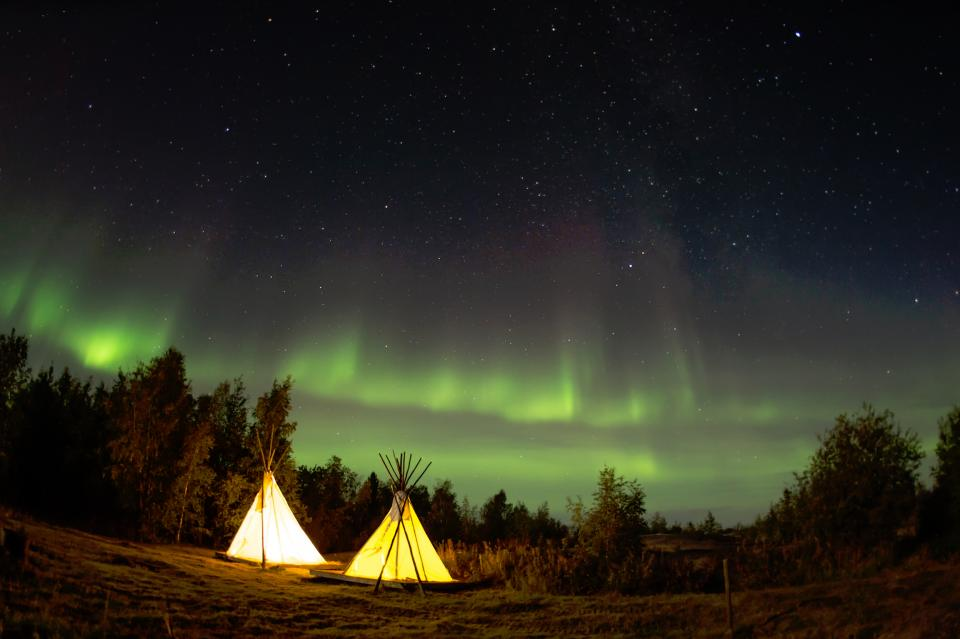 camping night stars woods forest trees northern lights