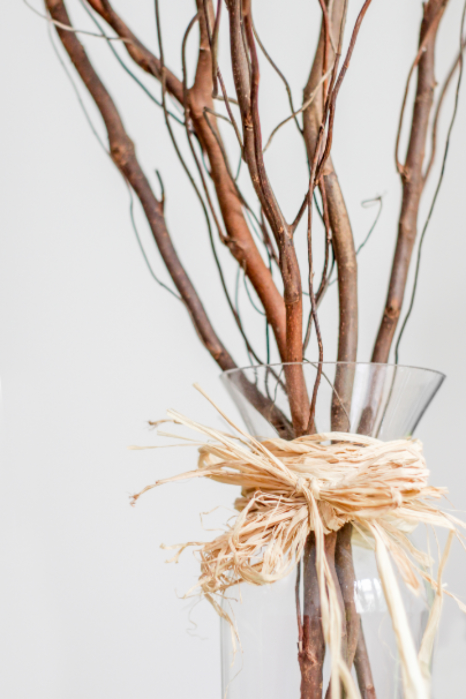 decorative vase branches minimal clean close up objects pastel simple decor background bouquet creative design interior home stylish