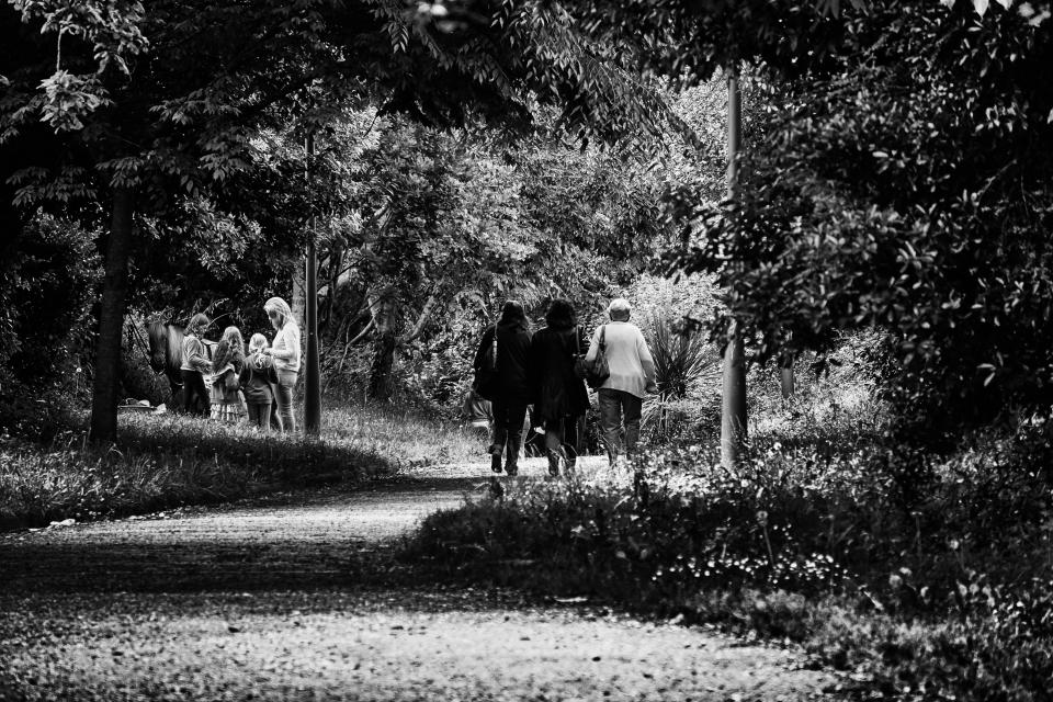 people women lady children mother animals horse road walking plants trees grass black and white
