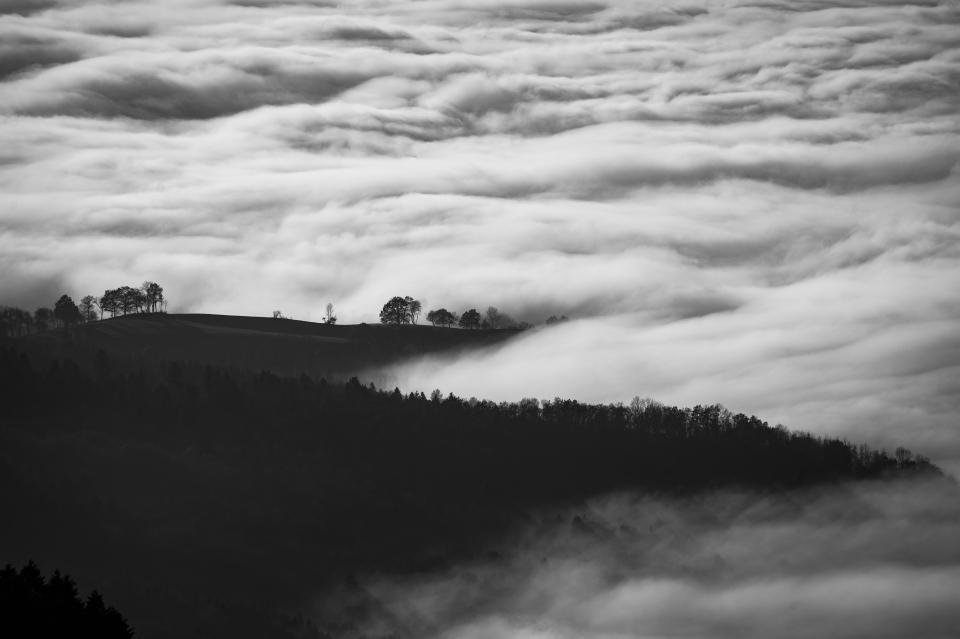 black and white sky clouds fogs cold trees plants nature mountain landscape