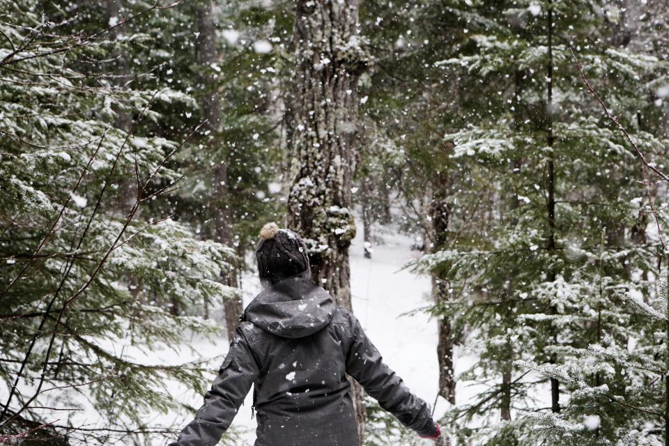 snow snowing cold winter outdoors forest woods trees nature girl woman people jacket coat hat