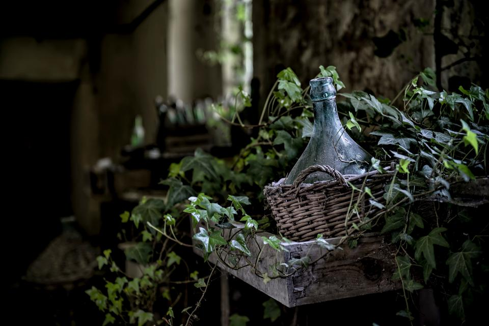 leaves vines basket bokeh blur bottle dirt dust wood plants old