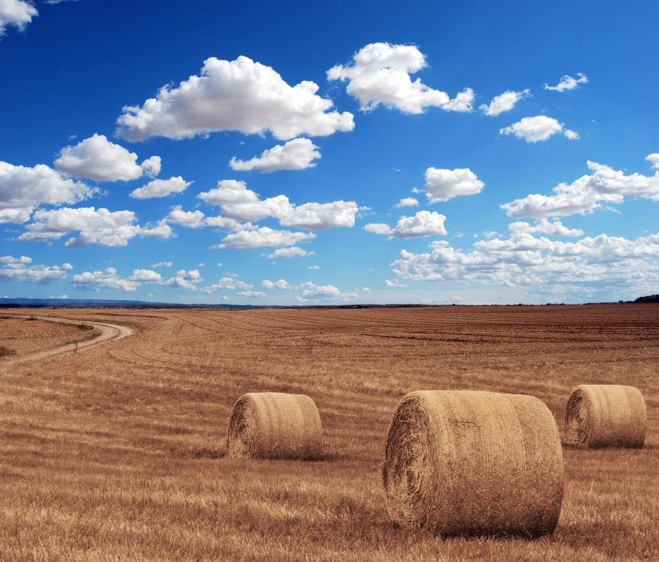 farm field hay agriculture grass blue sky clouds sunshine summer landscape nature countryside