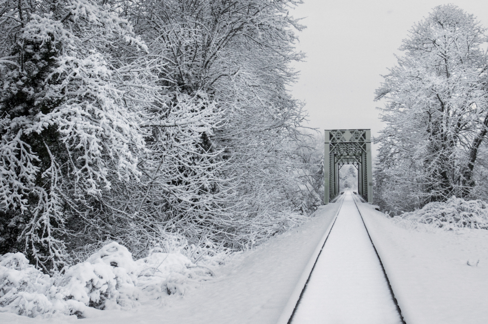 snow train tracks transport outdoors trees fresh winter cold freezing climate environment frost travel
