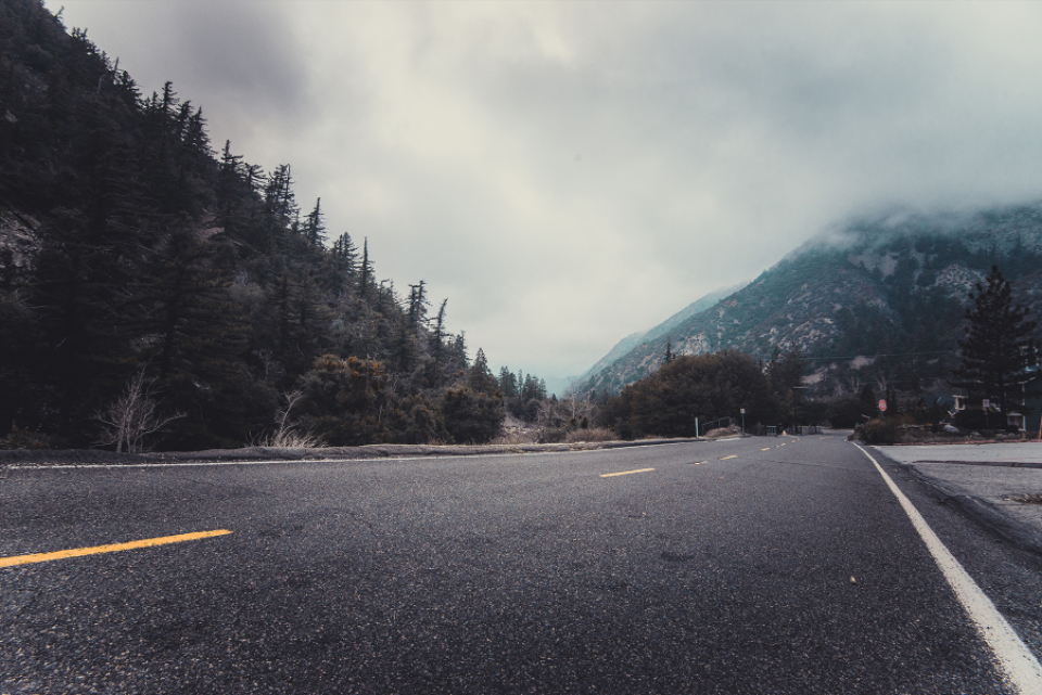 road motorway winter cold mountain forest yellow lines conifers fir fog mist highway pine trees sky
