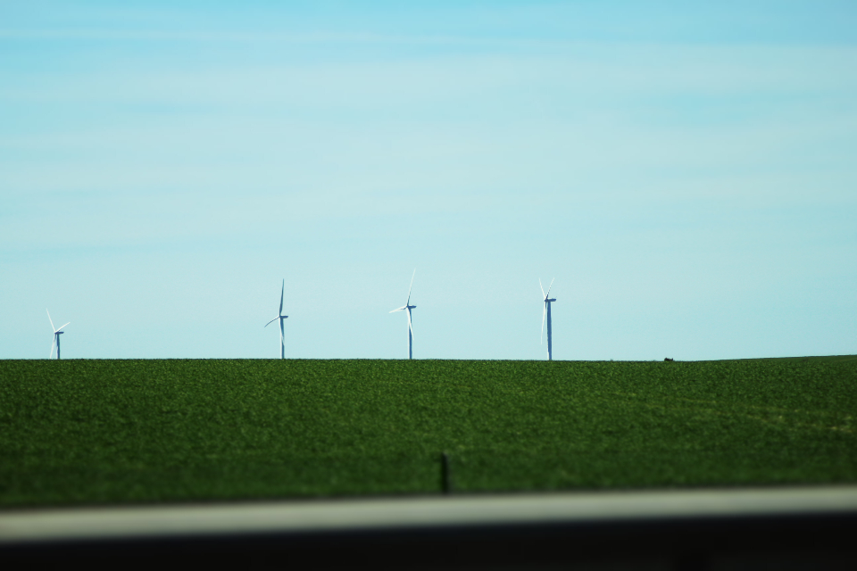 windfarm france grass