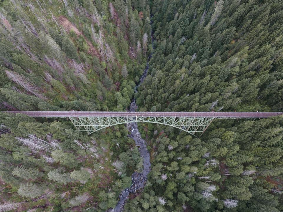 nature landscape aerial travel adventure bridge infrastructure trees leaves woods forest water river lake