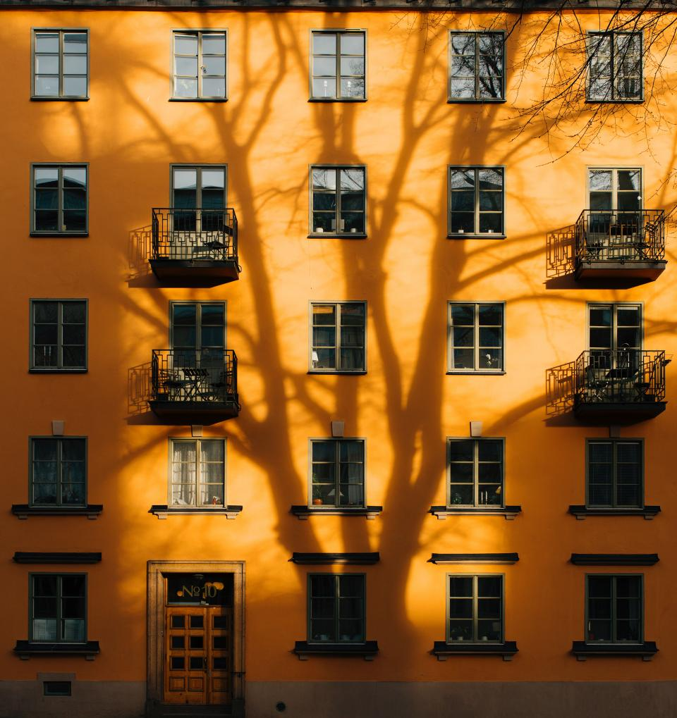 architecture building infrastructure design facade sunny tree shadow