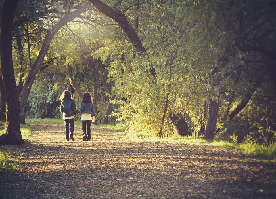 kids children twins friends walking fall autumn park trees leaves forest people