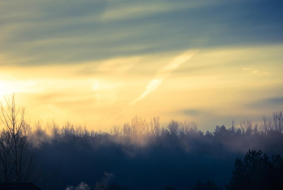 sunrise morning sky trees nature landscape fog