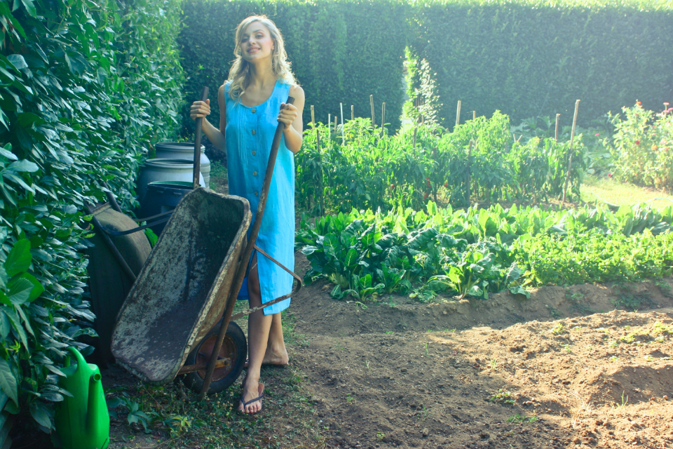 woman wheelbarrow garden yard work blue dress blond girl female person hobby grow nature