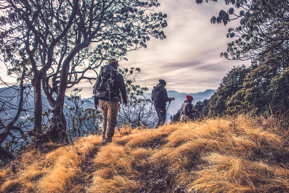 people hiking mountain winter autumn cold jacket backpack grass tree nature walk person man woman path hike
