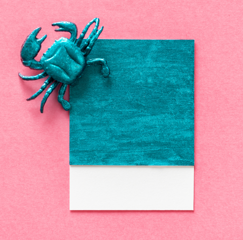 blue card concept copy space crab creative cute decoration figure fun green joy little mini miniature model paper pattern pink play seafood shape small symbol textured tiny toy