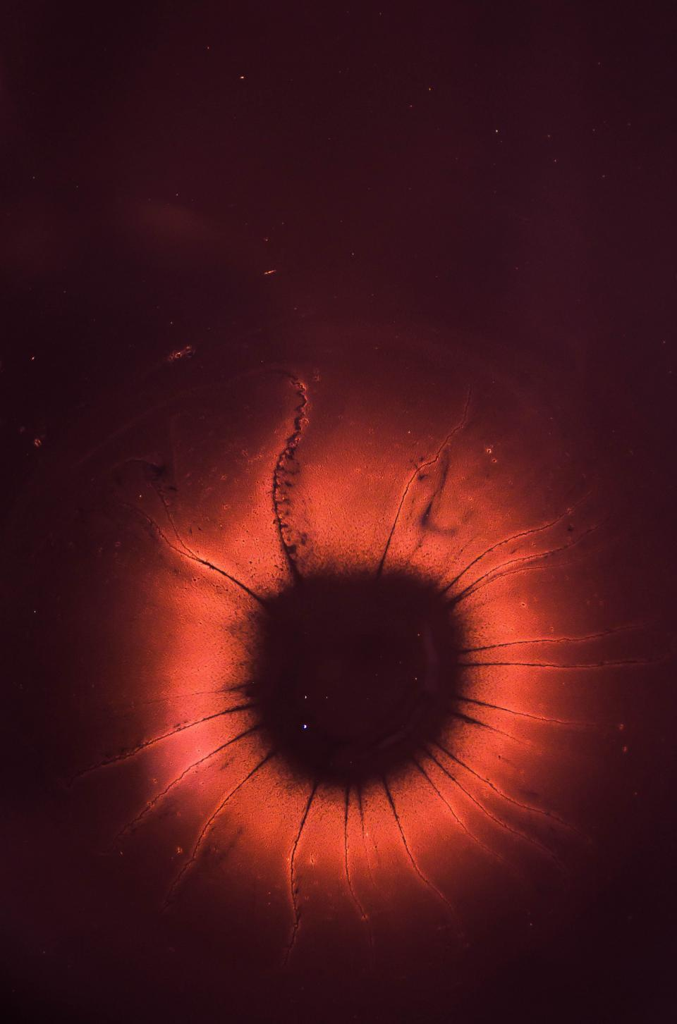 eye red iris pupil macro close up