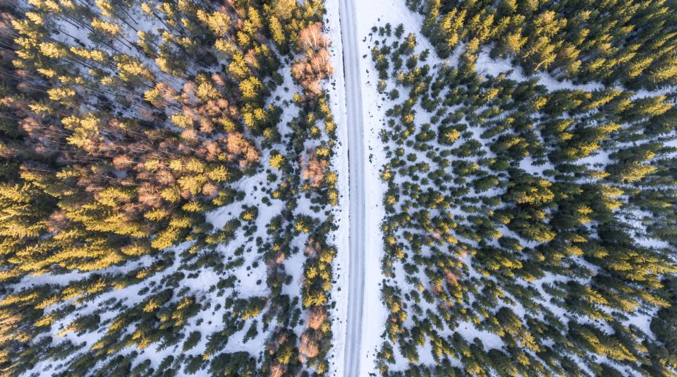 nature landscape aerial woods forest green trees plants snow winter cold weather road travel adventure