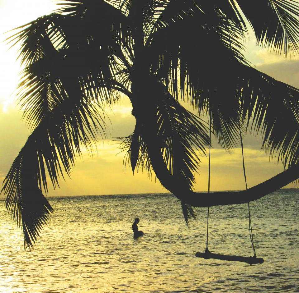palm trees swing ocean sea water beach tropical vacation swimming sunset dusk horizon silhouette