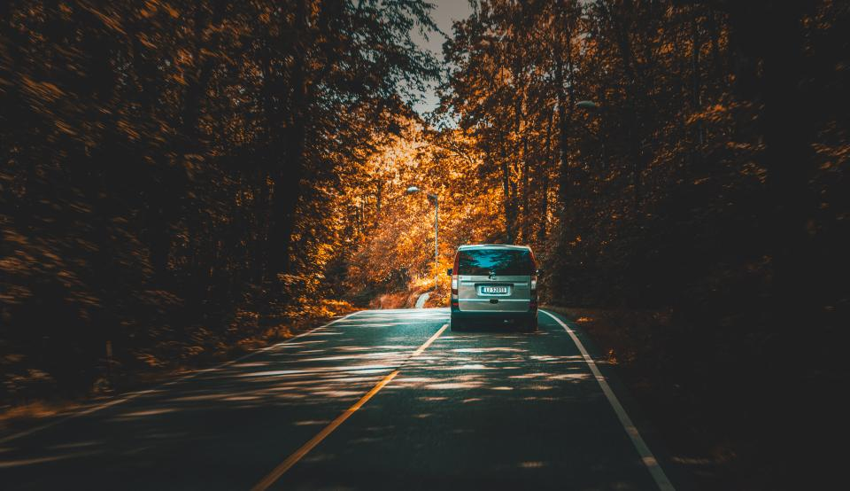 road path car vehicle trees plant nature forest travel trip fall autumn