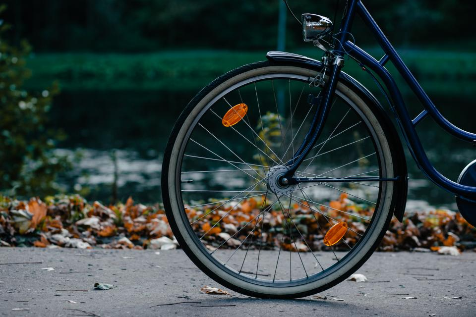 bike bicycle wheel steel leaf fall autumn grass dark