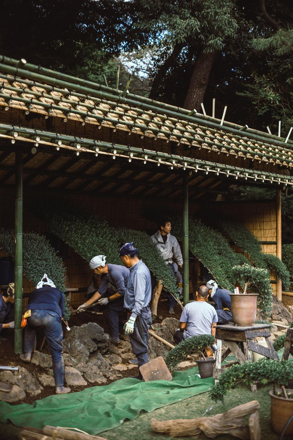 people men working landscape plant pot woods hut