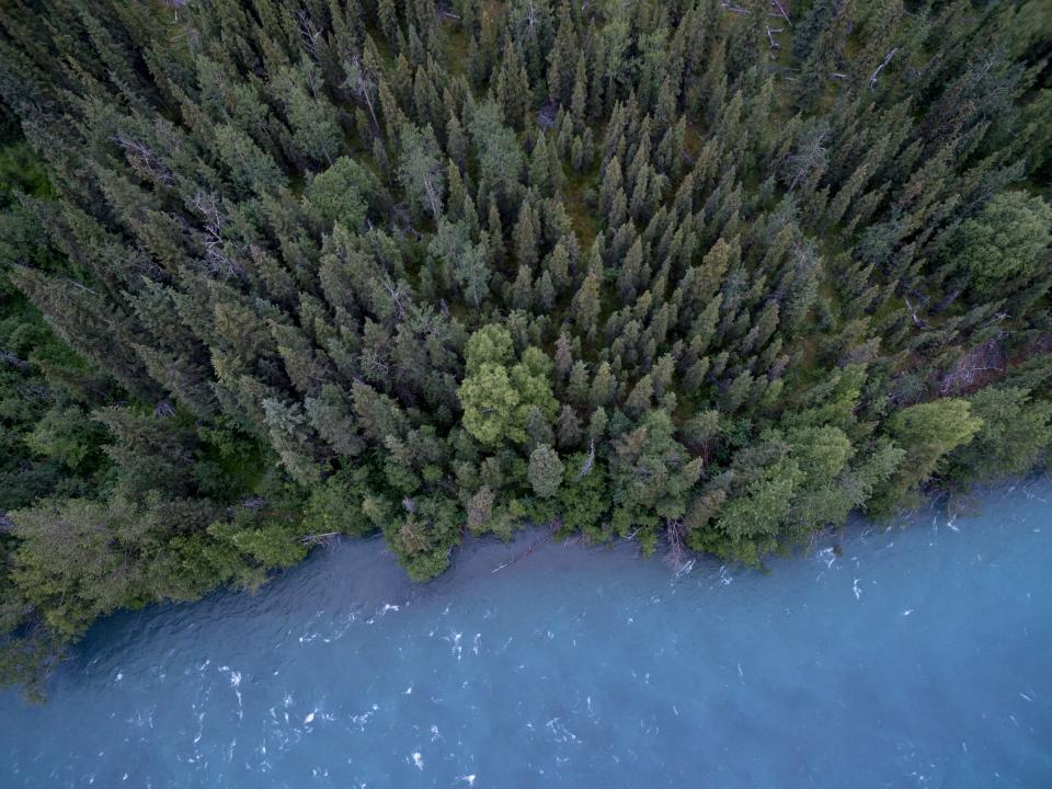 lake river water trees forest woods nature aerial view outdoors adventure