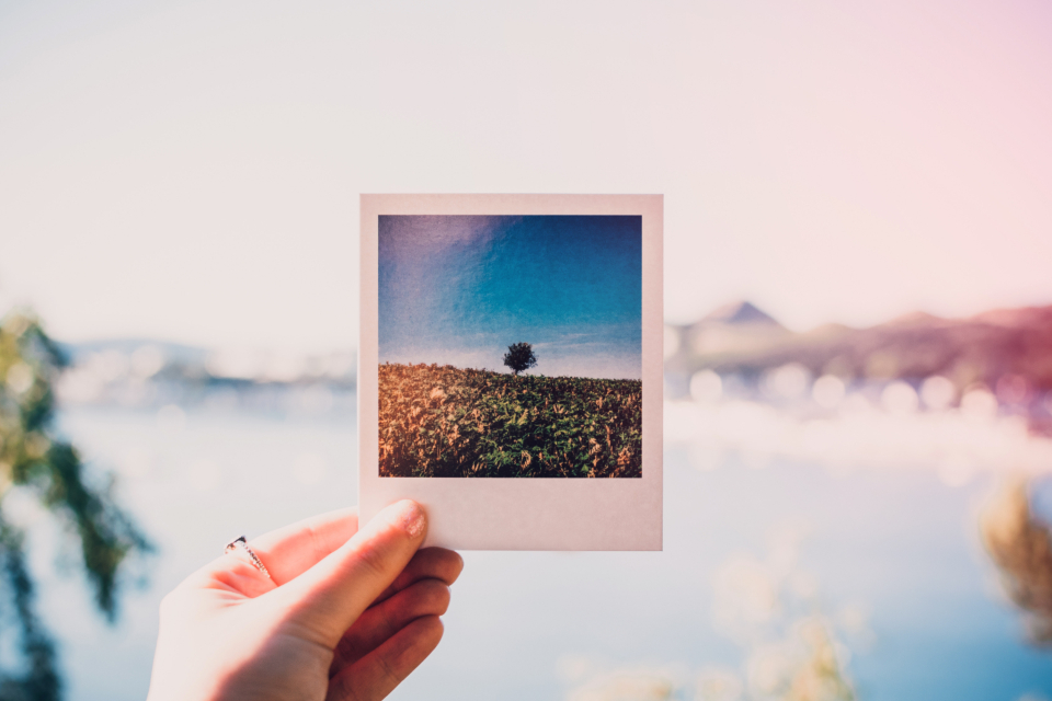 woman holding polaroid photo retro hand tree nature photographer landscape