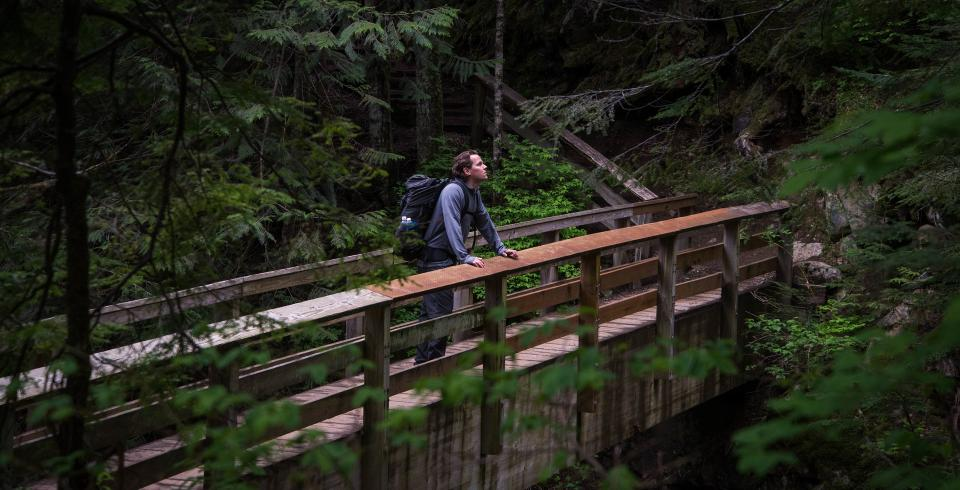 people man alone hiking outdoor travel pathway bridge forest trees nature plant adventure
