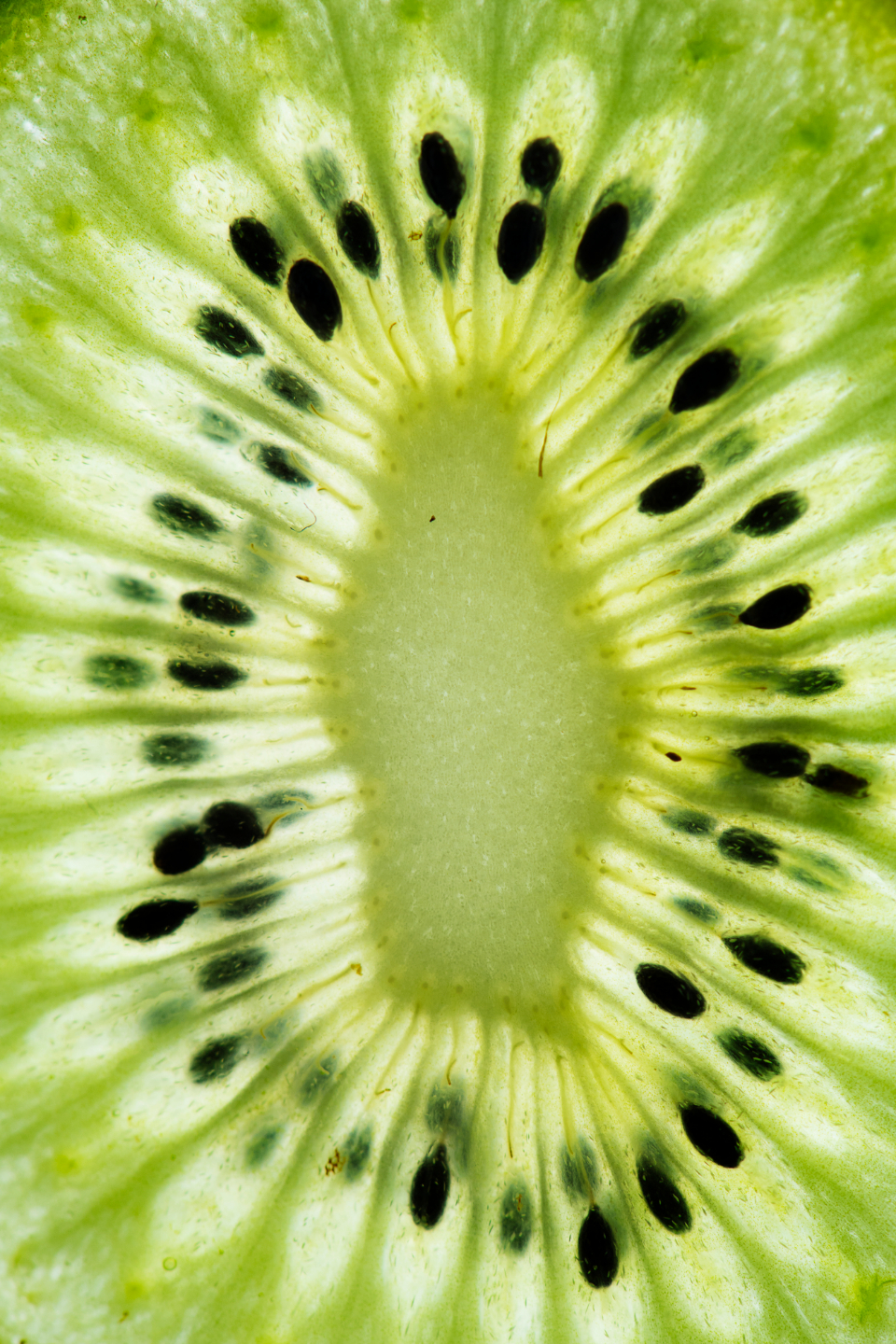 delicious fresh fruit fruity green health healthful healthy ingredient juicy kiwi kiwi closeup kiwi fruit kiwi macro kiwi slice kiwifruit macro natural nature nutrition nutritious organic pattern raw refreshi