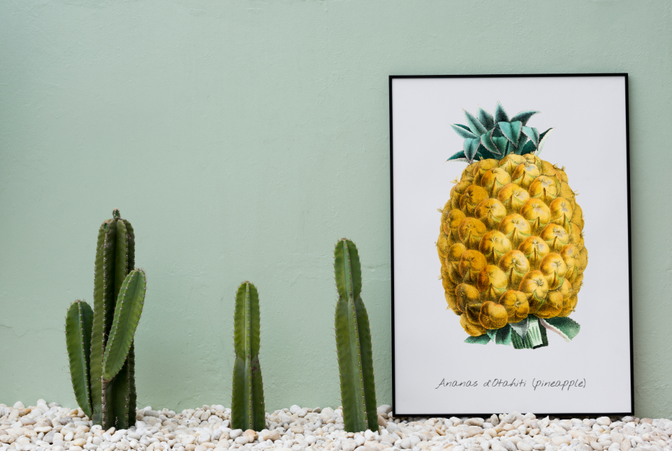 blank board cactus copy space decor design space frame home decor mockup paper paper board pastel present show space whiteboard fruit pineapple