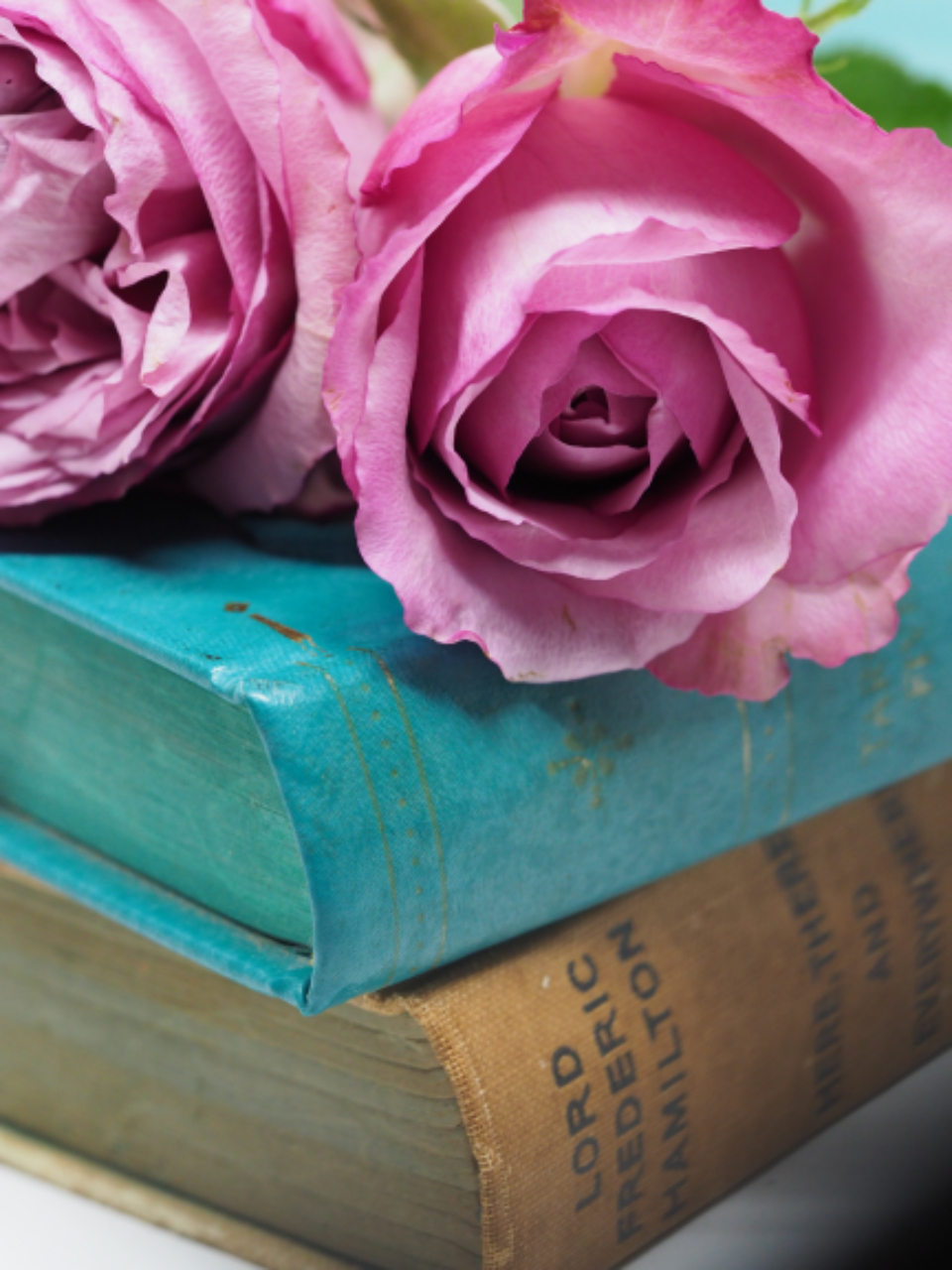 antique books roses pink roses vintage flowers reading read literature