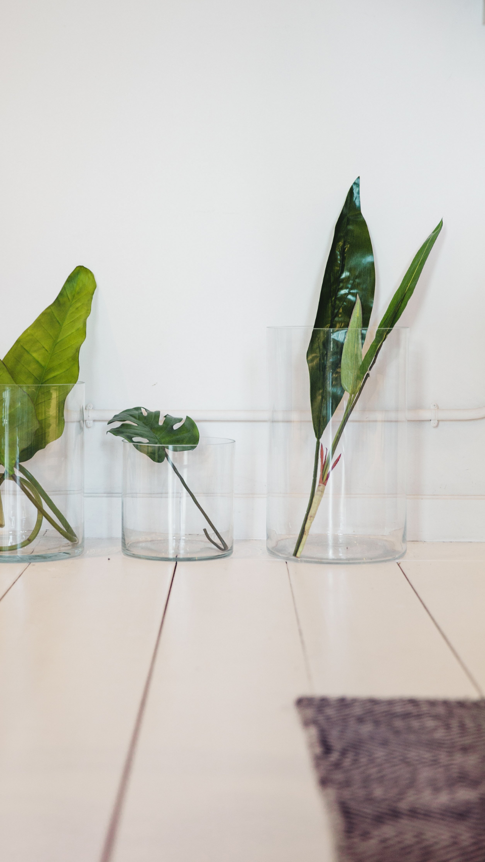 simple plants vase indoors decor decoration minimal organic natural home design botanical lush stylish