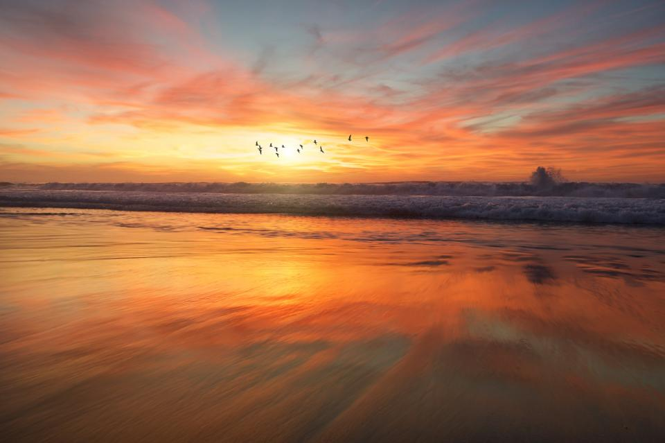 beach sand water ocean sea waves nature orange sky clouds sunset reflection birds animal fly