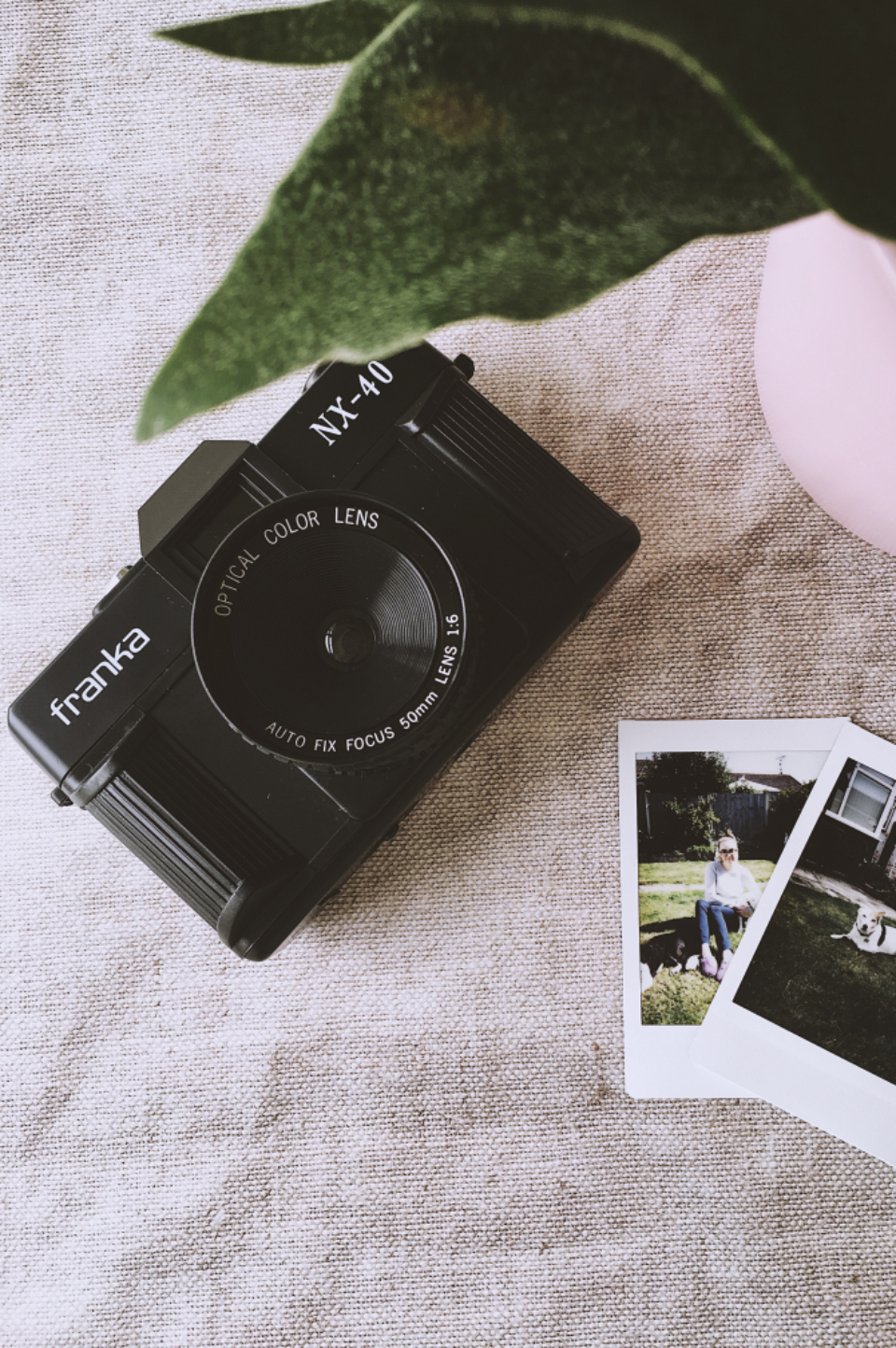 vintage camera dslr franka polaroid photo photographer plant cloth linen lens black leaf